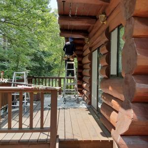 ログ塗装と樹木伐採