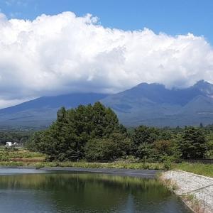 八ケ岳の町探訪&きのこ狩り