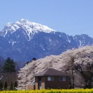 八ヶ岳の春