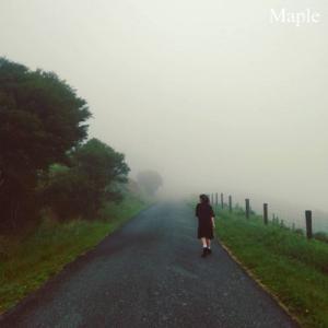 霧の中をお散歩。