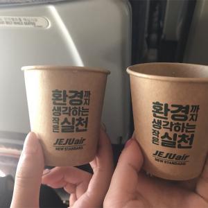 【旅行代金公開】3泊4日の韓国旅行に掛かった費用公開!予算はいくら?