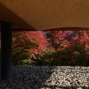 Nikon Df + AF-S Nikkor50mmF1.8Gで撮る禅と庭のミュージアム「神勝寺」