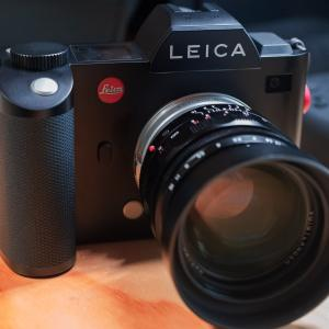 Leica SL + Voigtlander NOKTON50mmF1.1 VMで薔薇の最後を切り撮る