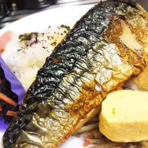 鯖の焼き物と総菜盛り合わせ