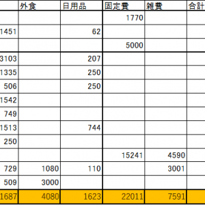 2020年3月の家計簿(支出は46,992円、配当金は29,812円)