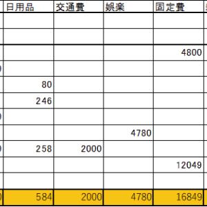 2020年6月の家計簿(支出は74,636円、配当金は95.15ドル)