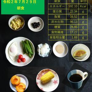 山本84歳・食事療法の記録・令和2年7月29日の食事
