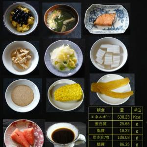 山本84歳・食事療法の記録・令和2年8月28日の食事