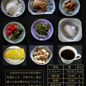 山本84歳・食事療法の記録・令和2年8月30日の食事