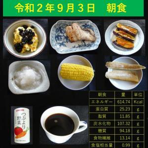 山本84歳・食事療法の記録・令和2年9月3日の食事