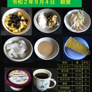 山本84歳・食事療法の記録・令和2年9月4日の食事