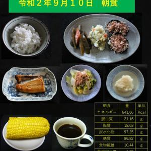 山本84歳・食事療法の記録・令和2年9月10日の食事