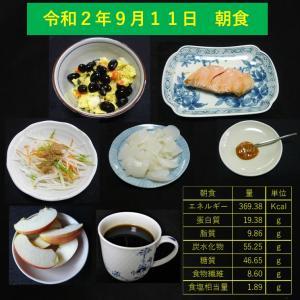 山本84歳・食事療法の記録・令和2年9月11日の食事