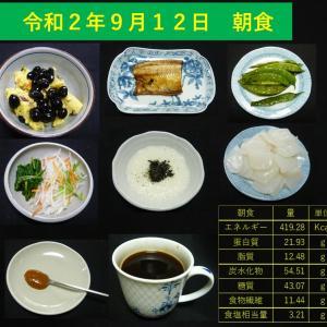 山本84歳・食事療法の記録・令和2年9月12日の食事