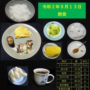 山本84歳・食事療法の記録・令和2年9月13日の食事