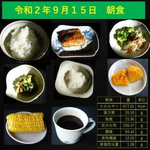 山本84歳・食事療法の記録・令和2年9月15日の食事