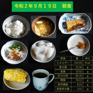 山本84歳・食事療法の記録・令和2年9月19日の食事