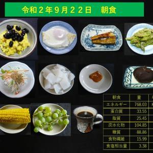 山本84歳・食事療法の記録・令和2年9月22日の食事