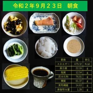 山本84歳・食事療法の記録・令和2年9月23日の食事