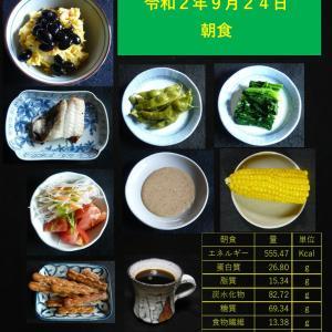山本84歳・食事療法の記録・令和2年9月24日の食事