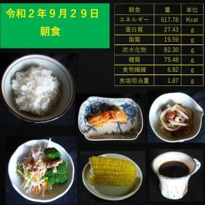 山本84歳・食事療法の記録・令和2年9月29日の食事