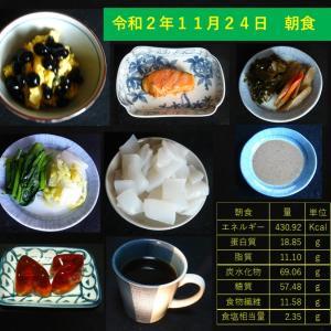 山本84歳・食事療法の記録・令和2年11月24日の食事