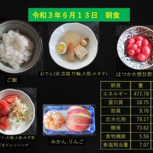 山本85歳・食事療法の記録・令和3年6月13日の食事