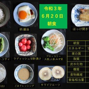山本85歳・食事療法の記録・令和3年6月20日の食事