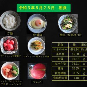 山本85歳・食事療法の記録・令和3年6月25日の食事