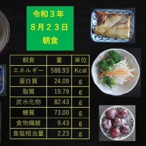 山本85歳・食事療法の記録・令和3年8月23日の食事