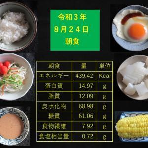 山本85歳・食事療法の記録・令和3年8月24日の食事