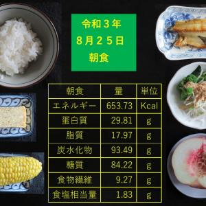 山本85歳・食事療法の記録・令和3年8月25日の食事