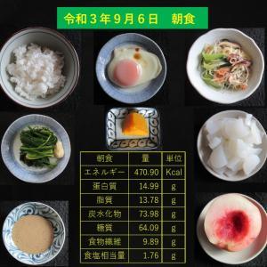 山本85歳・食事療法の記録・令和3年9月6日の食事