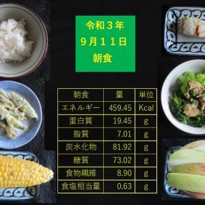 山本85歳・食事療法の記録・令和3年9月11日の食事