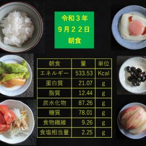 山本85歳・食事療法の記録・令和3年9月22日の食事