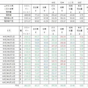 山本84歳No.2 食事療法の記録・令和2年6月1日~令和2年6月15日までの集計