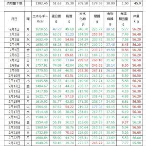 山本84歳・食事療法の記録・令和3年2月(ひと月間)の食事記録の集計