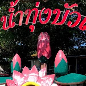 Red Lotus Floating Market でドローン撮影