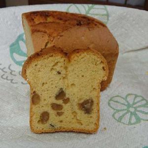 試作パウンドと美味しいパン