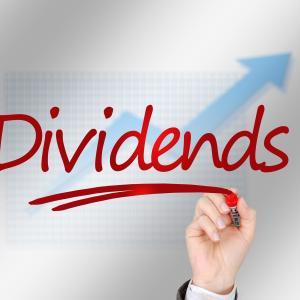 高配当株投資のメリット・デメリット -高配当株投資はインデックス投資に勝てない-
