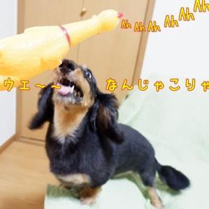 瞬殺!チキン(笑)