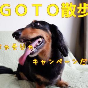 GOTO散歩(笑)