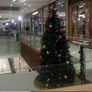 ブルガリアのクリスマスⅢ