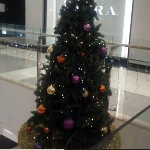 ブルガリアのクリスマスⅣ