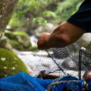 千葉から鹿児島③ 誰もいない大自然の川で撮影!