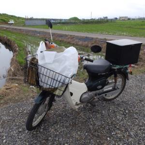 【釣りバカ日誌】魚淫さん、遂に漁協に入漁料を払う!?