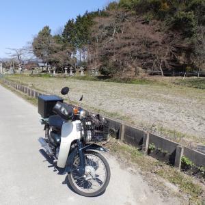 謎のゾンビ軍団と熊岡神社 〜 観音坂トンネル開通!と佐和山城攻略記 その8