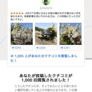 Googleマップのクチコミに反応する店主の皆さんへ