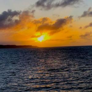 宮古島でディナーとサンセットを楽しむなら大型客船モンブランがオススメ!