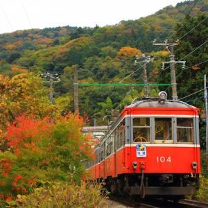 関東近郊のお得な切符11選を紹介します!